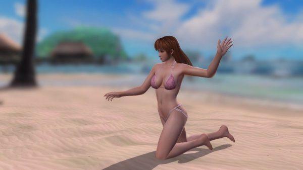 DOA5 Beach Paradise 「DOA5 Beach Paradise」MODポーズコマンド集