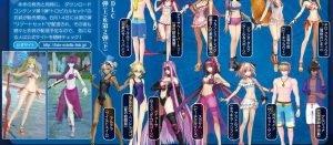 水着, Fate/EXTELLA LINK Fate/EXTELLA LINKの水着コスチュームが割とエロいらしい。