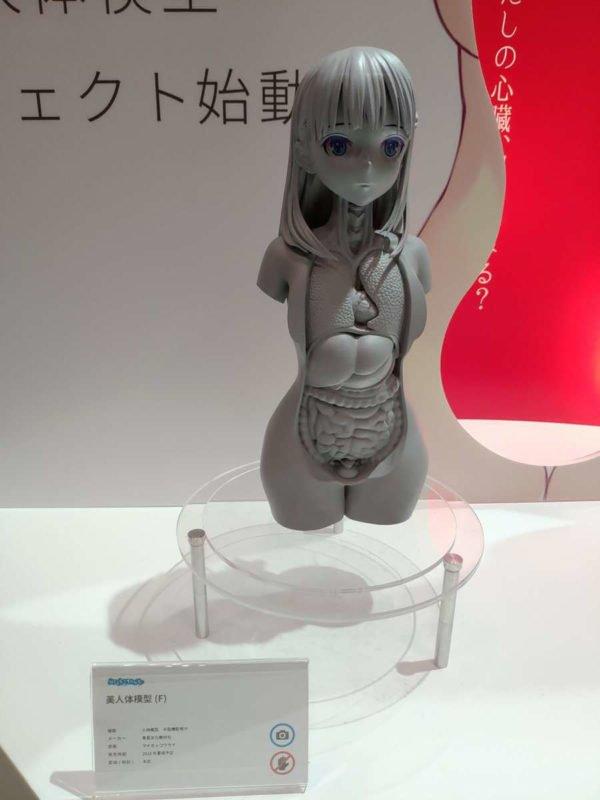 美人体模型 【閲覧注意】美人体模型という、物凄い作品が出展されてるらしい!