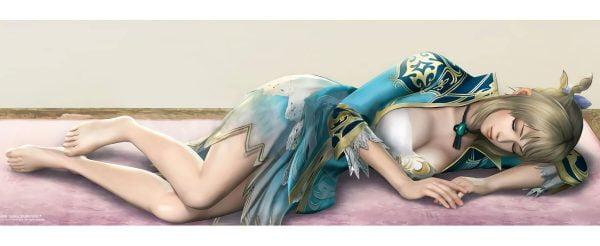 無双シリーズ, 女キャラ 無双シリーズの女キャラはエロく美しい。